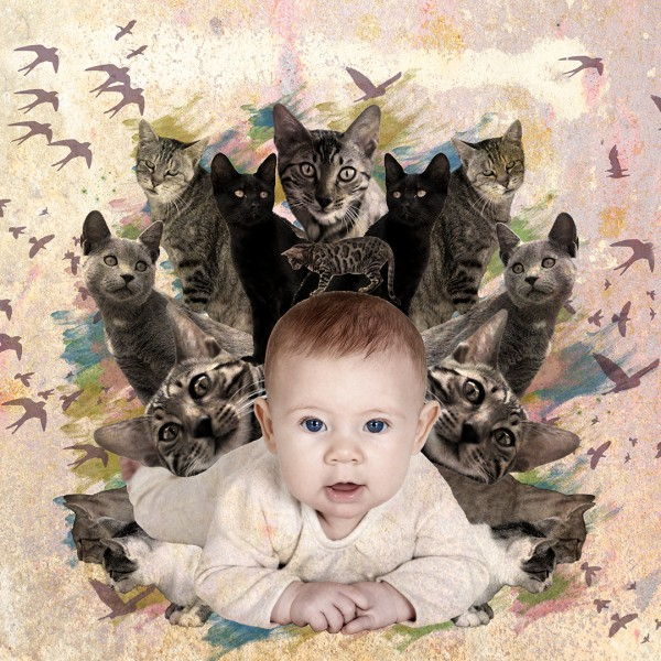 Lillie and Cats Collage